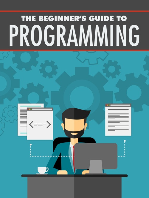 Product picture Beginners Guide To Programming - ebook with MRR